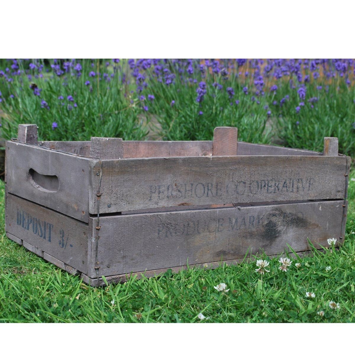 Damson Box
