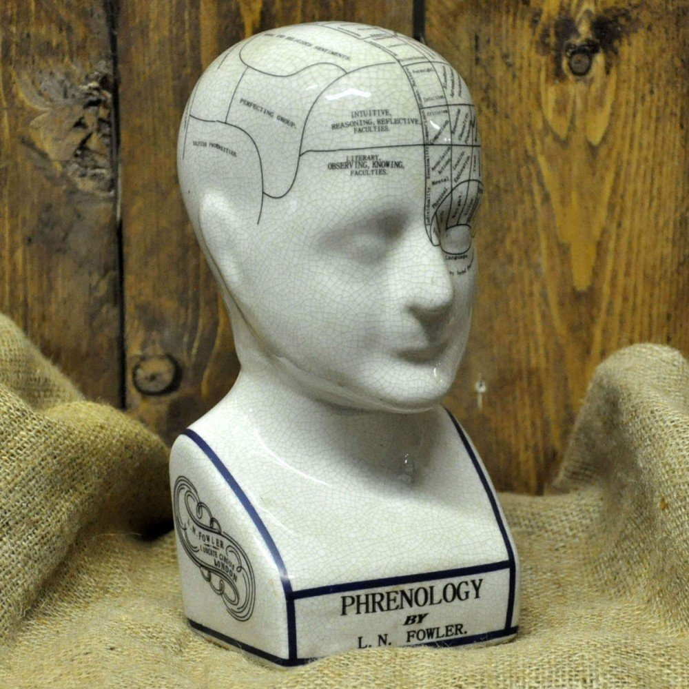 Phenology Head 30cm