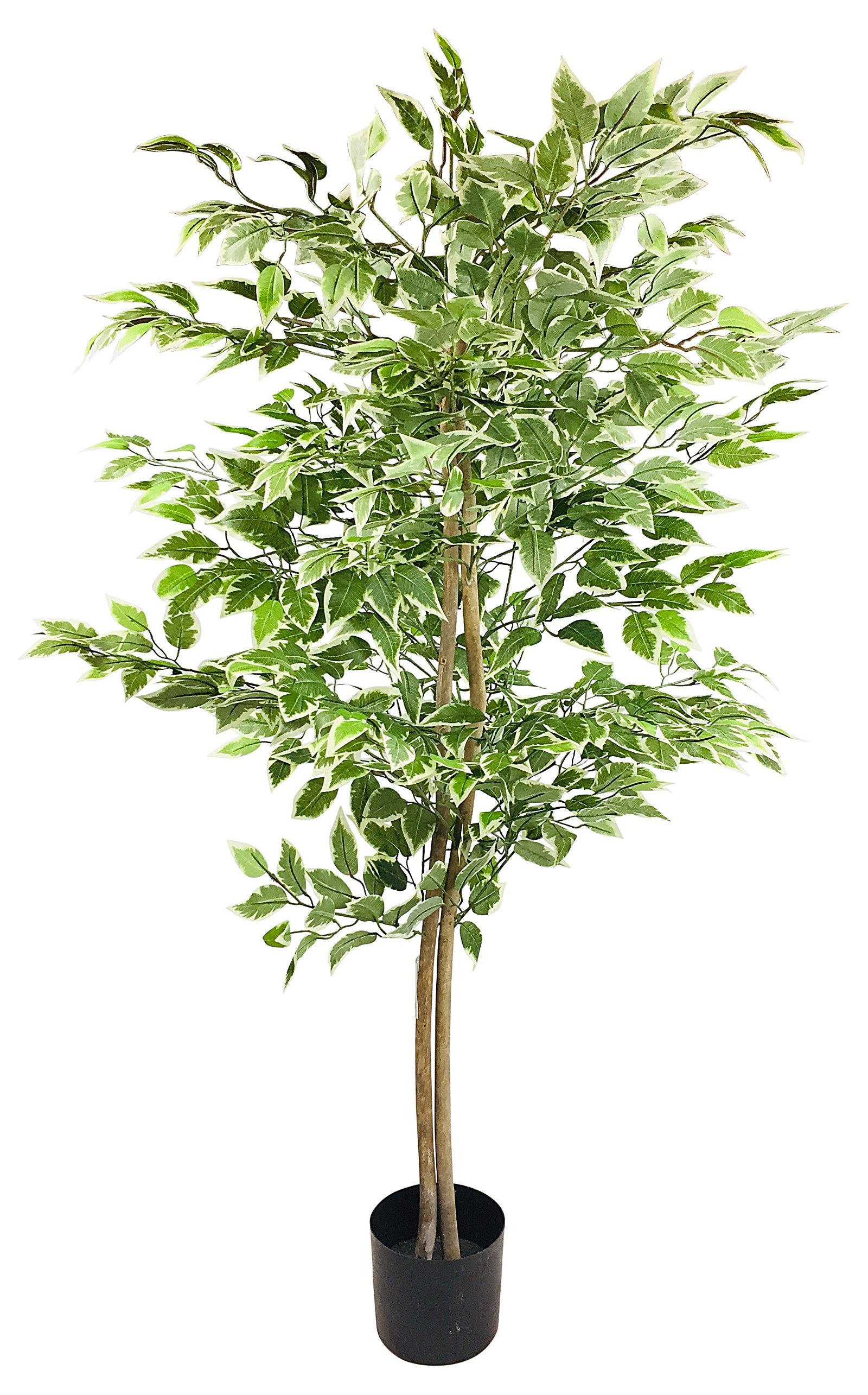 Artificial Ficus Tree With Variegation Colour Leaves 160cm